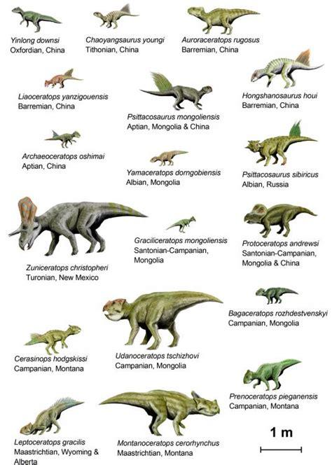 Se Estima Que Este Dinosaurio Vivió En Más De Un Continente Concretamente Lo Se Conoce La Actualidad Como Norteamérica Y Europa Su Nombre